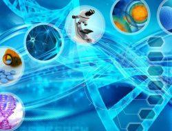 حمایت معاونت علمی و فناوری